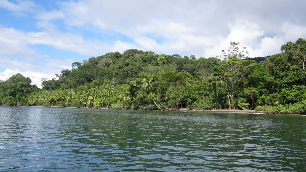 Fahrt zur Niuesa Rainforest Lodge