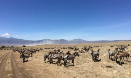 Tansania – ein Traum von Afrika