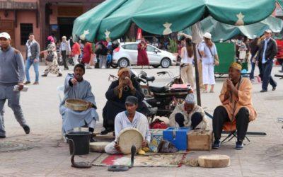 Die Highlights von Marrakesch in 24 Stunden