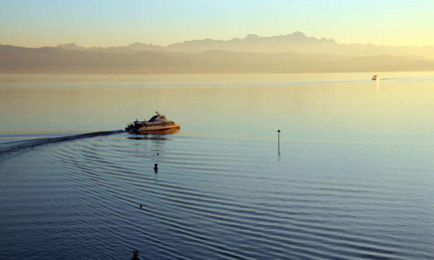 Segeln am Bodensee (Juli / August)