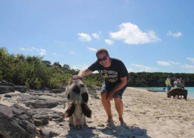 Staniel Cay - Schwimmende Schweine