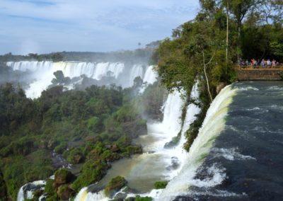 Wasserfall umgeben von Wald