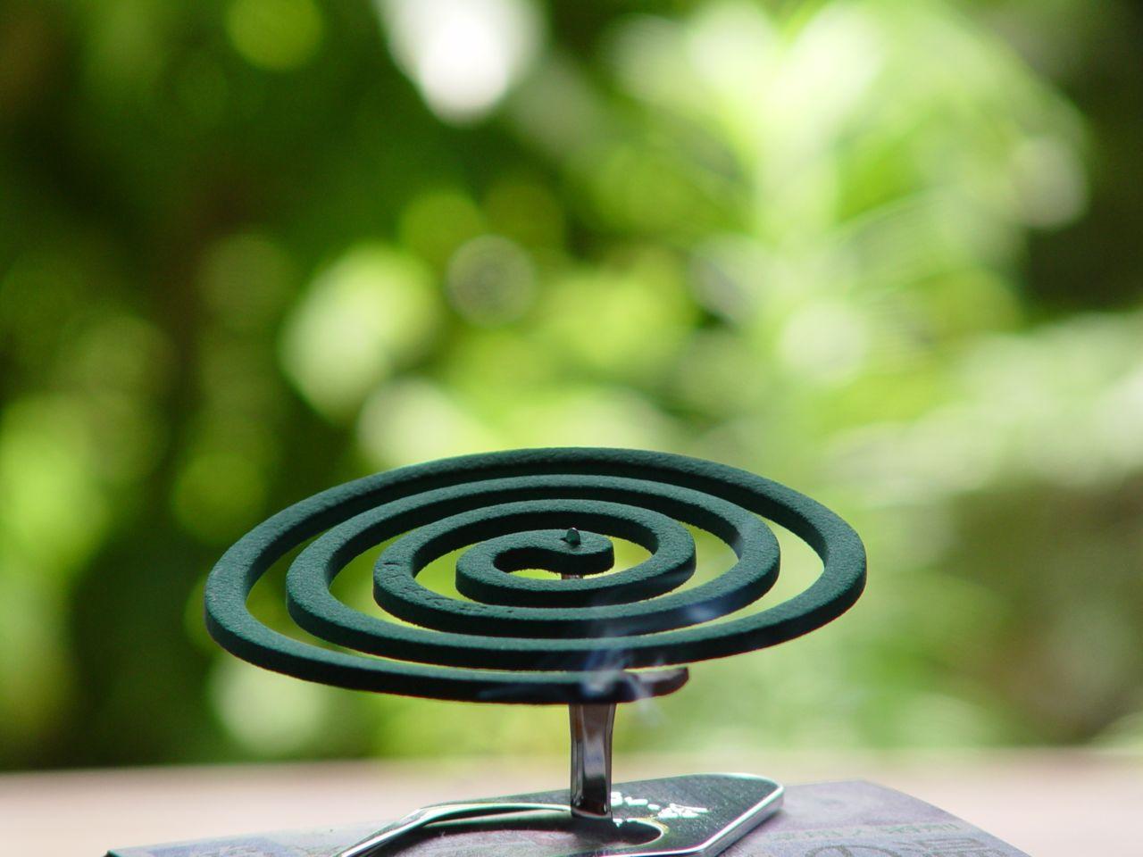 Grüne Spirale vor grünem Hintergrund