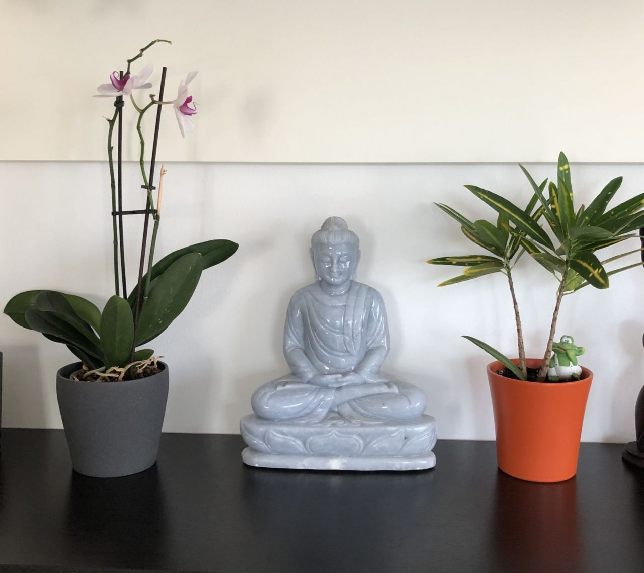 Pflanzen und Buddhafigur auf Sideboard