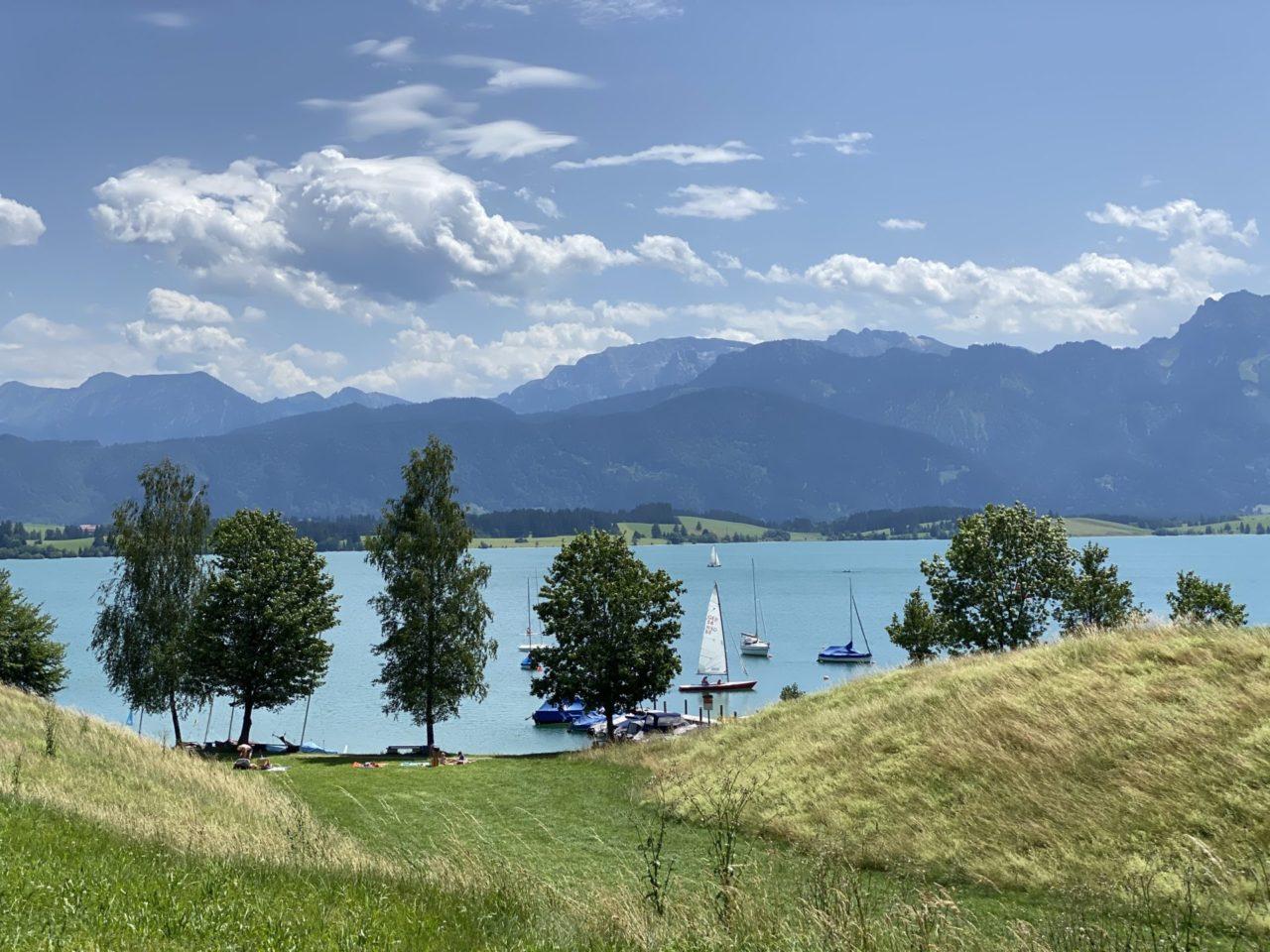 Ein See mit Bäumen und Bergen im Hintergrund