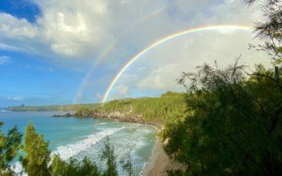 40 Dinge, die Du über Hawaii wissen solltest